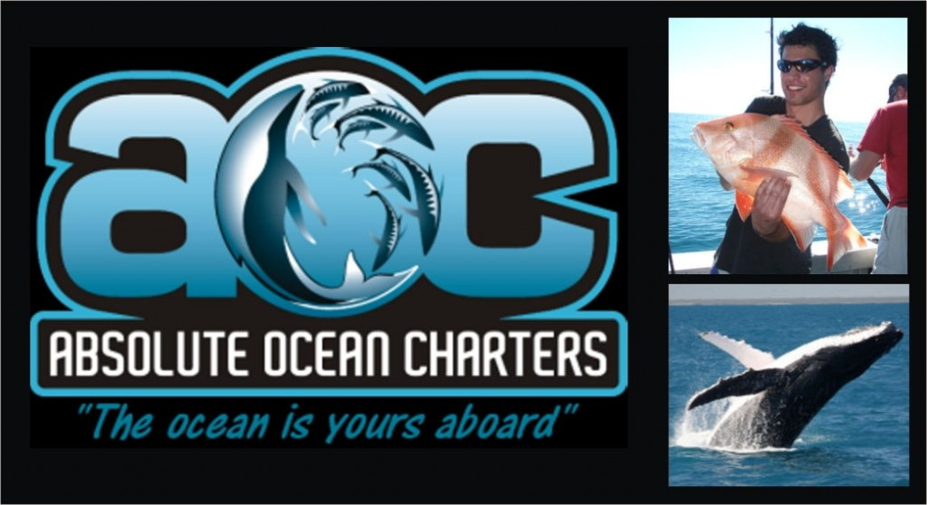 Absolute Ocean Charters_web