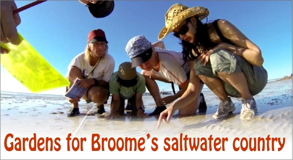 Gardens for Broome's saltwater country